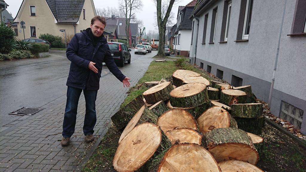 Katastrophale Auswirkungen der neuen Baumschutzsatzung