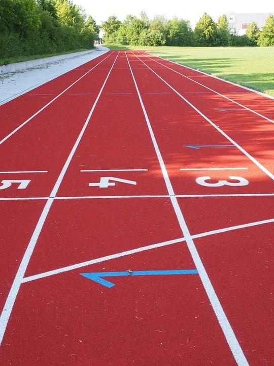 Öko Check der Sportstätten in Zusammenarbeit mit dem Landessportbund