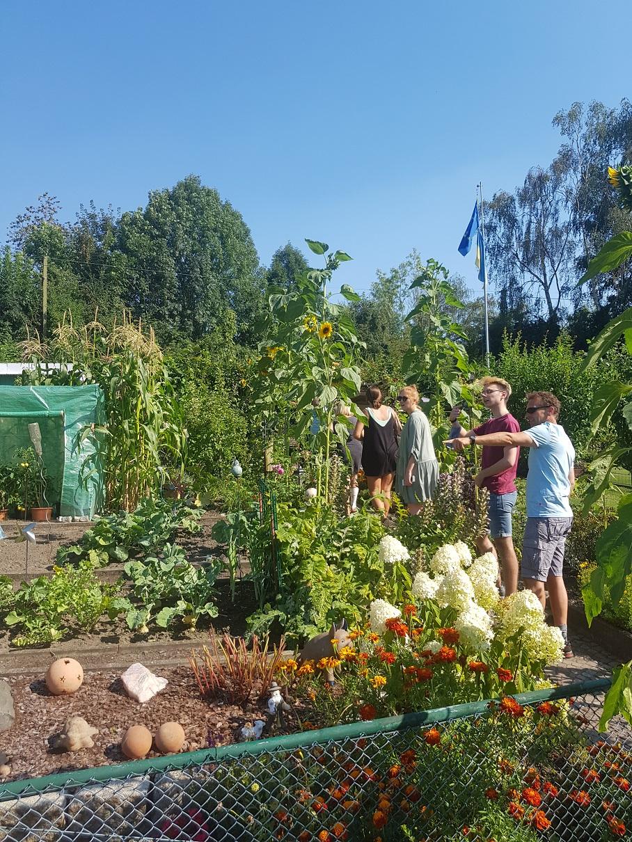 Grüne für Kleingartenentwicklungsplan